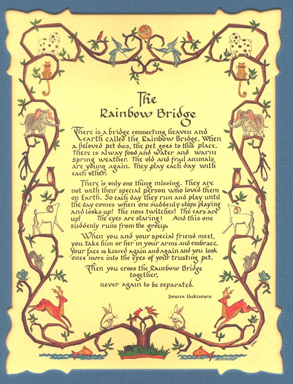 Rainbow bridge poem tumblr